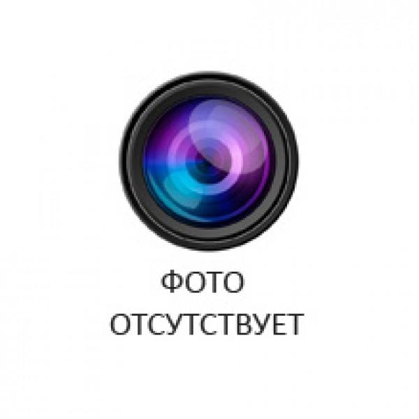Пол Керамогранит  VINTAGE WOOD CAST16x100